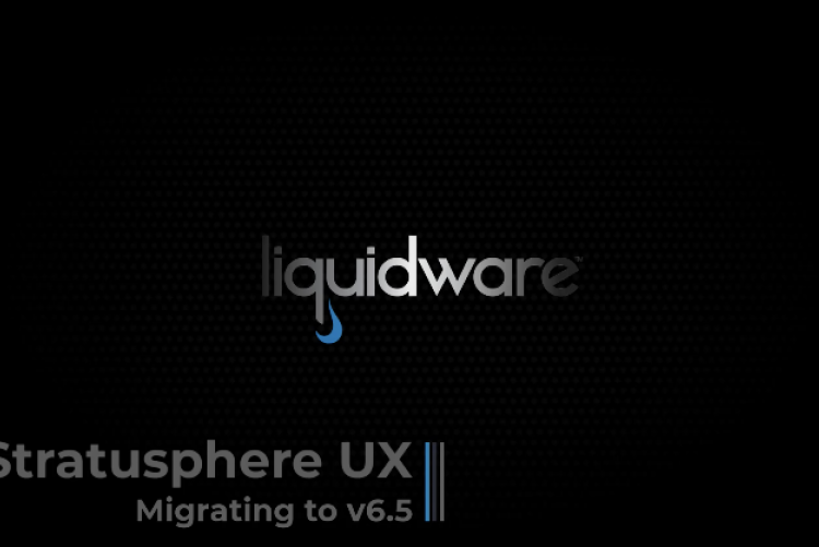 Stratusphere UX 6.5. Migration - Separate Hub and DB appliances on Vmware vSphere Infrastructure