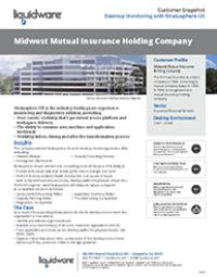 Insurance Holding Company PDF